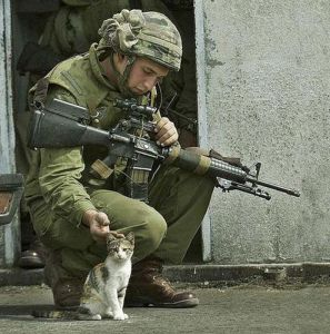 Image -Veteran & cat