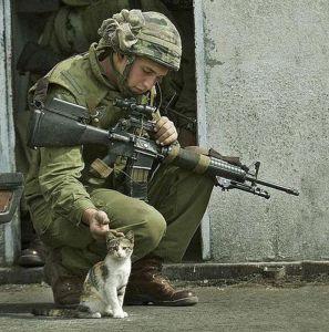 Image -Veteran & cat