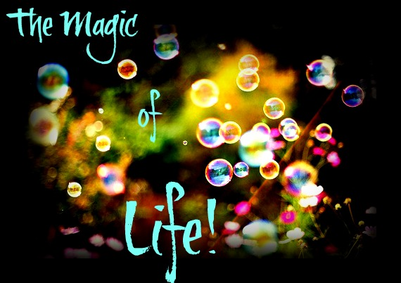 image-magic-of-life-4