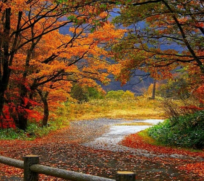 image-scenic-fall-colors