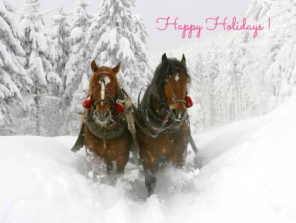 image-happy-holidays-sleigh-horses-redone