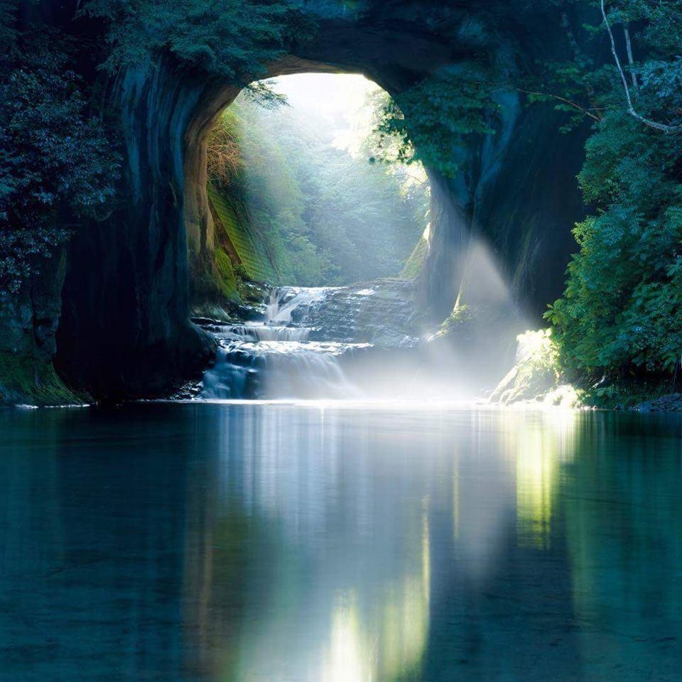 Image -scenary light thru tunnel of trees
